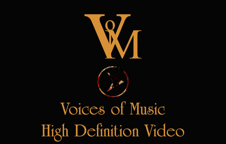 Voices of Music Videos